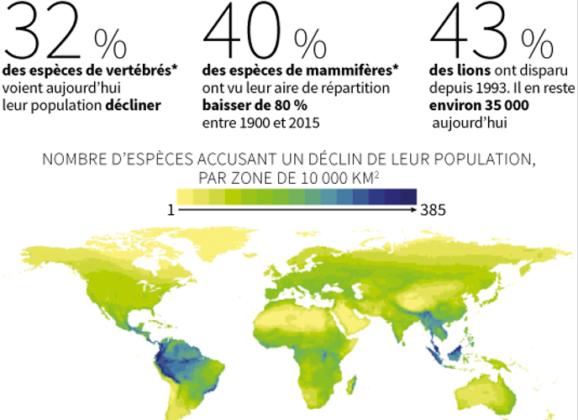 Biodiversité – 6ème extinction : des mesures urgentes sont à prendre !