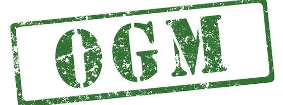 OGM – Pour une interdiction définitive !