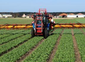 Pesticides : Il y a urgence, la santé publique est en jeu !
